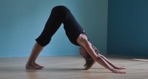Adho mukha svanasana Yoga for Computer Users